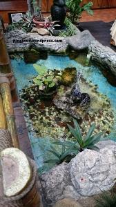 kolam air mancur kecil