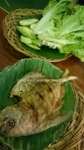 selada yang hampir ludes dengan ikan bawal goreng