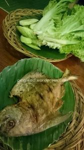selada yang hampir ludes dengan ikan bawal goreng